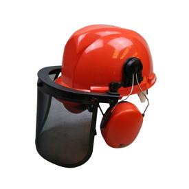 Imagen de Pantalla forestal con casco y orejeras