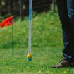 Imagen de Aplicador de herbicida de contacto Matabi Weedstick
